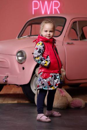 Демисезонная куртка-трансформер серо-ягодная для девочек